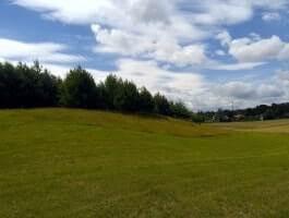 Działka rolna pod zabudowę siedliskową, Okuniowiec