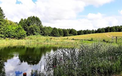 Działka w okolicy Sejn, 4.4 ha, staw, rzeka, las.