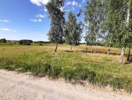 Suchodoły gm. Jeleniewo 1.84 ha, działka pod zabudowę na Sprzedaż