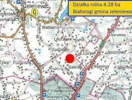 Białorogi gm Jeleniewo - działka rolna na sprzedaż 4.28 ha
