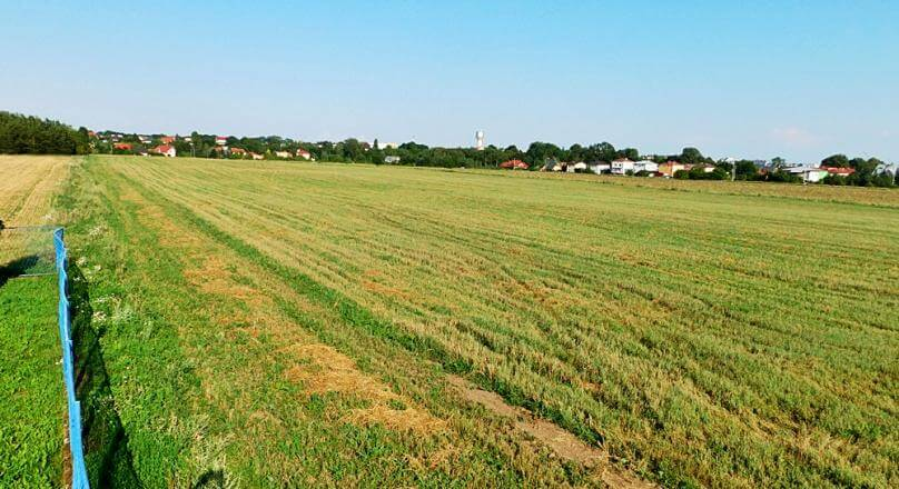 Działki rolne 2.4 ha, ul. Kołłątaja, m.Suwałki