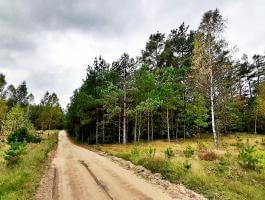 Działka na sprzedaż w gminie Płaska, 7281 m2