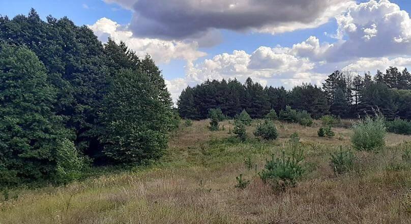 Bakałarzewo na wzgórzu 1.0966 ha działka nad jeziorem Sumowo
